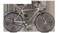 Rower miejski Raise RT2 Shimano Nexus 3-Speed FH